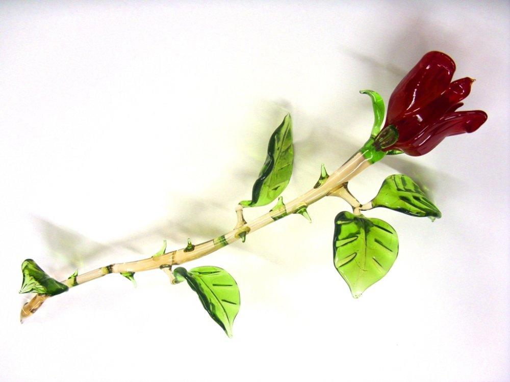 Роза каира краснодар флористика фото